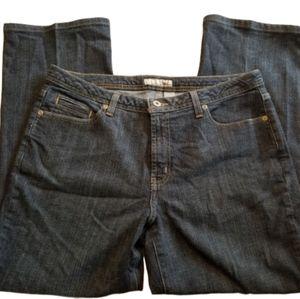 || CHICOS || Platinum Size 2 (12) Short Jeans